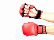 Phoenix Ju-Jitsu cimdi sarkani