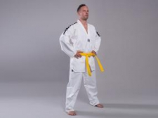 Phoenix Standard Edition DESIGN Taekwondo doboks