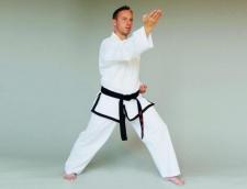 Phoenix Master Taekwondo uniforma (W)