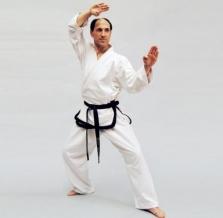 Phoenix Master Taekwondo doboks (W)
