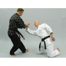 Scorpion Diamond Hapkido kimono balts (X)